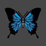 Schmetterling Designs Gestalte ein T-Shirt Schmetter...