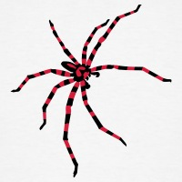 Accessoires und T-Shirts Dunkle gestreifte Spinne gestalten