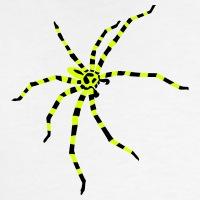 Accessoires und T-Shirts Helle gestreifte Spinne gestalten