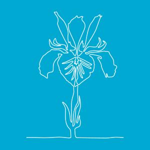 Anpassbares Blume Designs für T-Shirt Druck