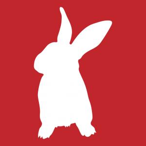 Weißes Kaninchen T-Shirt zu gestalten. Kaninchen Piktogramm Designs für T-Shirt Druck.