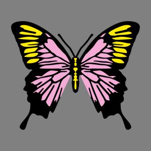 Schmetterling und Frühling Design