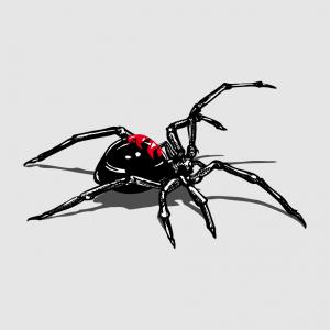 Schwarze Witwe T-Shirt zu gestalten. Black Widow Designs für T-Shirt Druck.