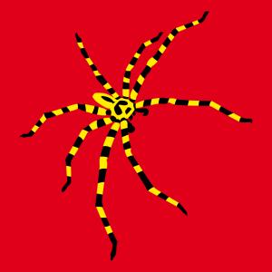 gestreifte Spinne T-Shirt zu gestalten. Spinnen Designs für T-Shirt Druck.