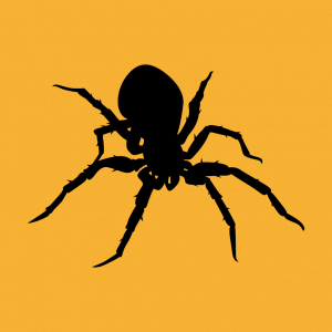 Webspinnen T-Shirt zu gestalten. Spinne Designs für T-Shirt Druck.