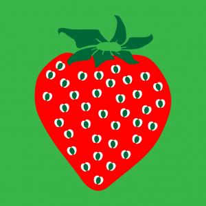 Erdbeere und Frucht Design für T-Shirt Druck