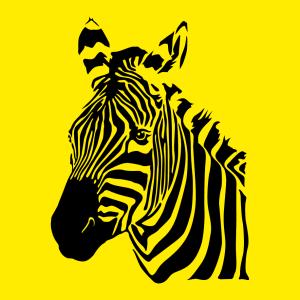 Zebra Design für T-Shirt Druck