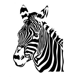 Tiere T-Shirt zu gestalten. Zebra Designs für T-Shirt Druck.